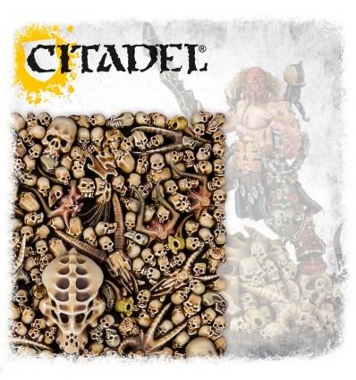[Citadel] Skull